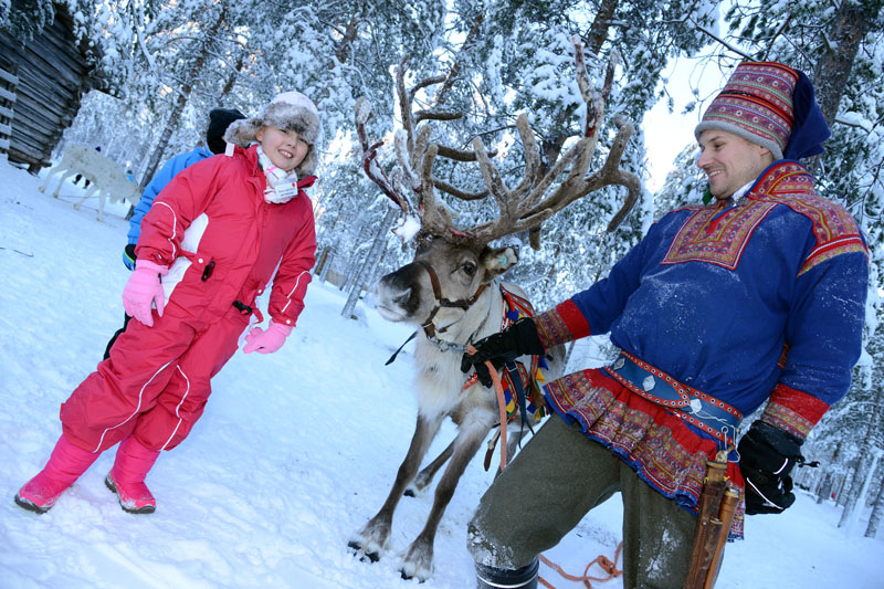 enchanted forest reindeer